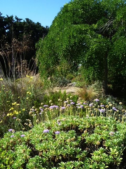 gravel - Jardin Sec
