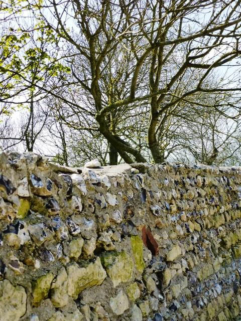 15 walls