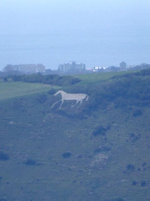 7 white horse