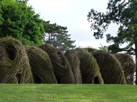 patrick doughertywillow 3