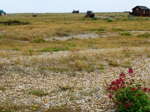 10 to beach landscape prospect dungeness