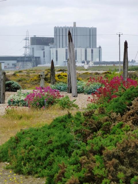 6 garden at prospect dungeness