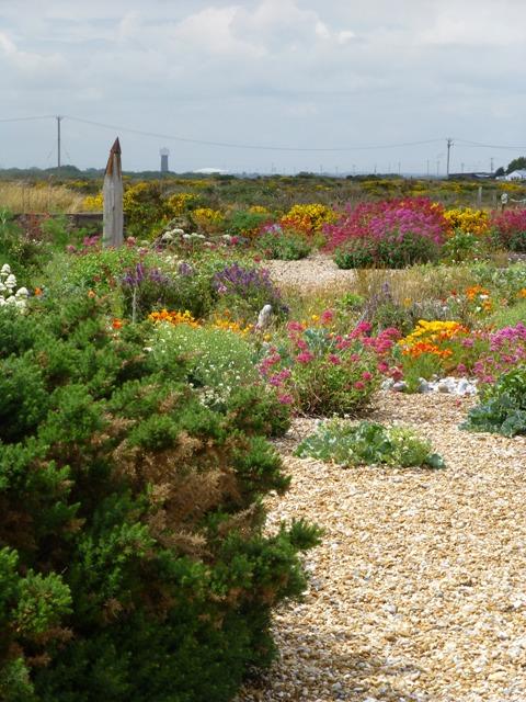 8 garden at prospect dungeness