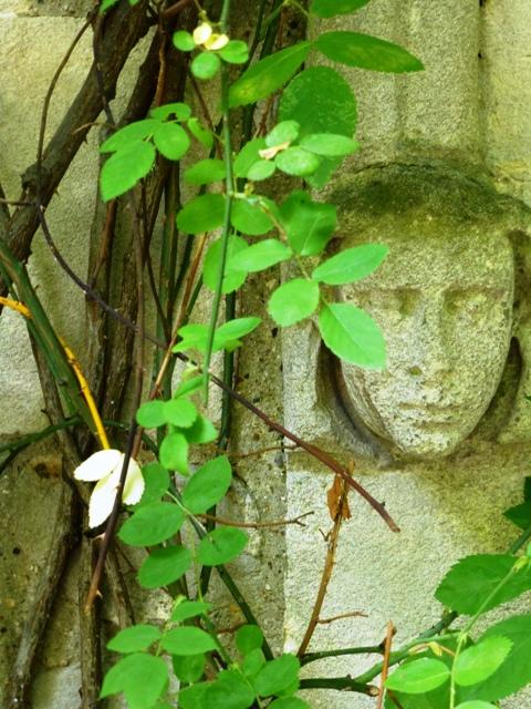 mus garden history detail