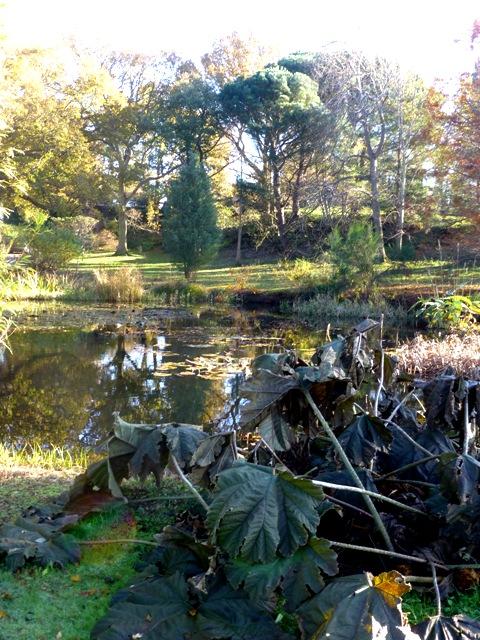 horse pond 2
