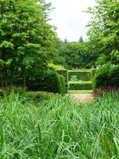 katsura grove, molinias to spring box border5