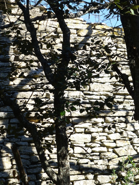 dry stone wall ruins