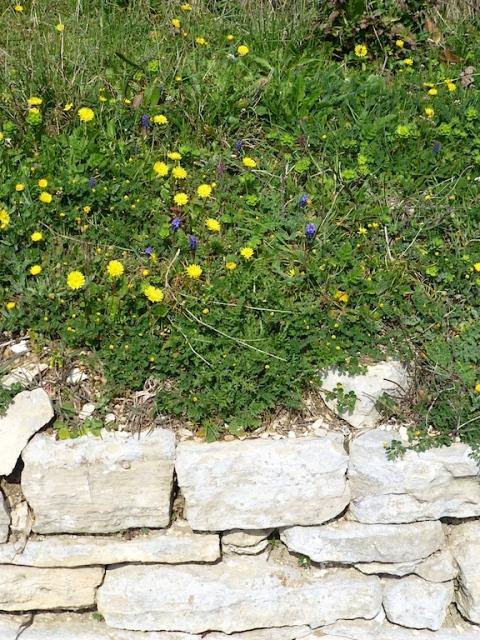 murs 4