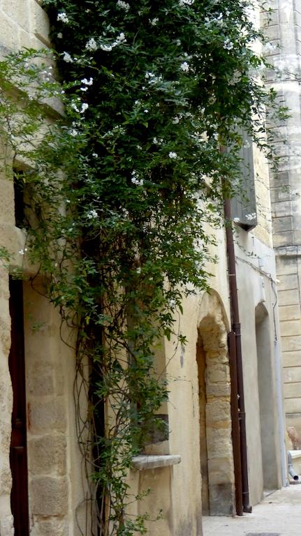 rue petite bourgade 2