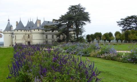 salvias chateau 1