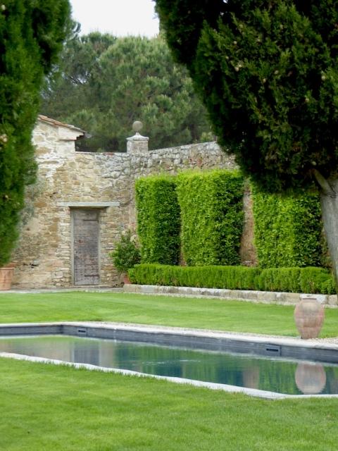 pool cupressus window copy