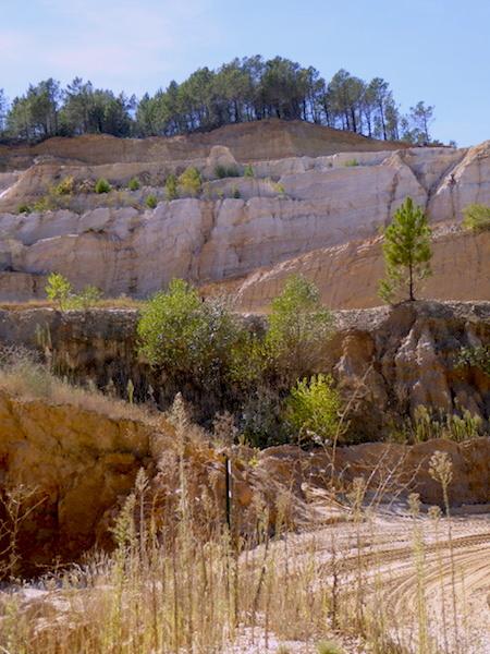 quarry-portarit