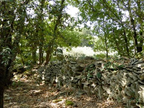 wall-pont-du-gard