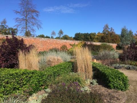 marks-hall-curving-hedges